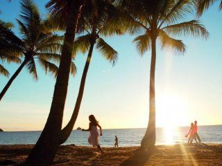 Suberb Palm Cove Management Rights