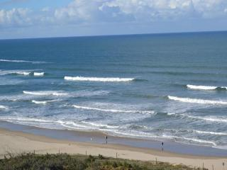 High Rise - High Net - Management Rights Business For Sale - Sunshine Coast - 1P0048MR